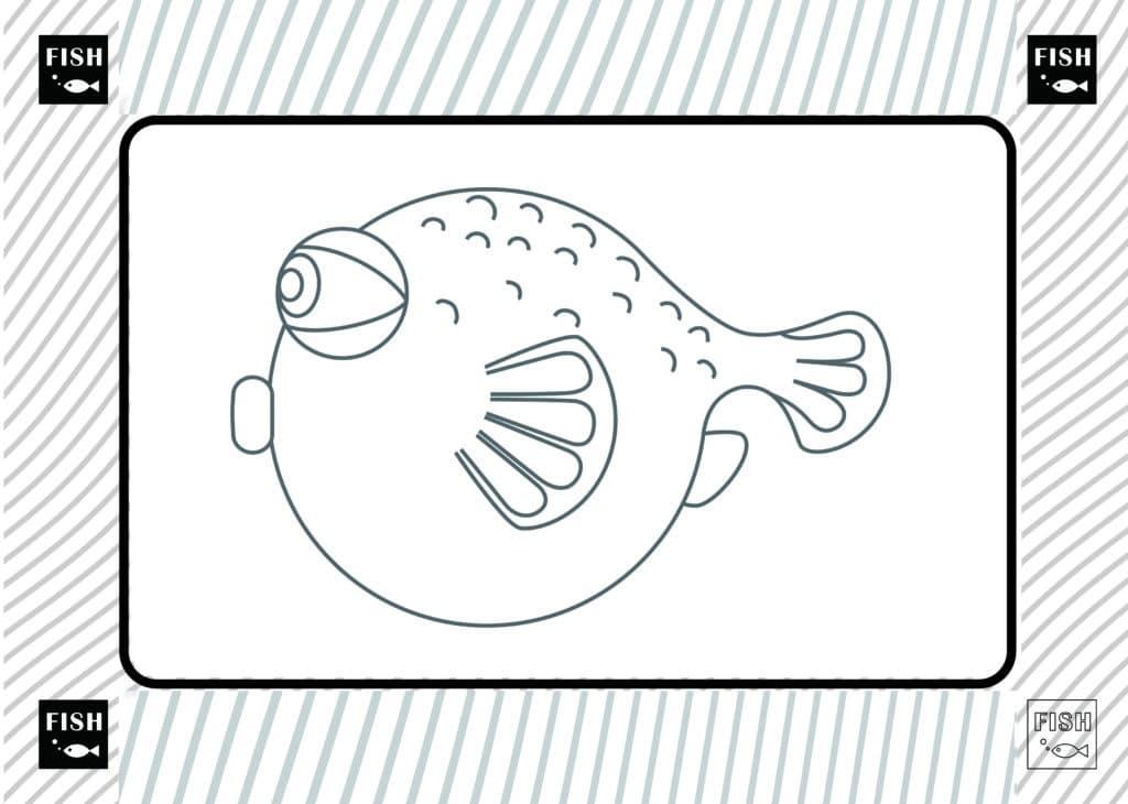 Chirurgien dentiste poissons